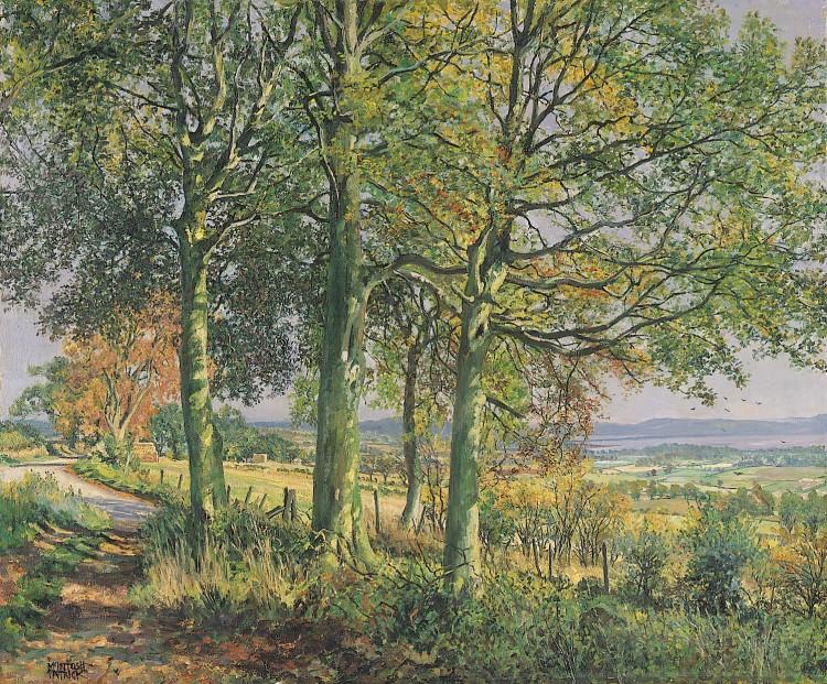 James McIntosh Patrick_Beach Trees at Dron_19.5x23.5