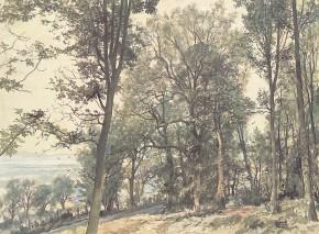 James McIntosh Patrick_Trees_20x27
