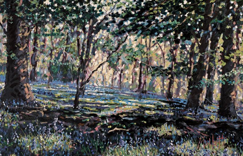MALLETT Bluebell Shadows