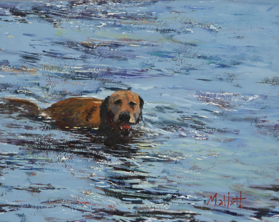 TIMMY MALLETT_  Doggy Paddle_Oil on Board_16x19