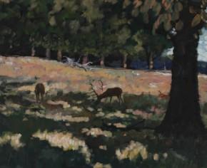 TIMMY MALLETT_Deerpark Shadows_24 X 20_OIL ON SCANVAS