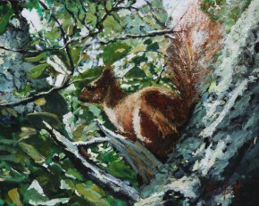 TIMMY MALLETT_The Red Squirrel_24 X 20_OIL ON BOARD