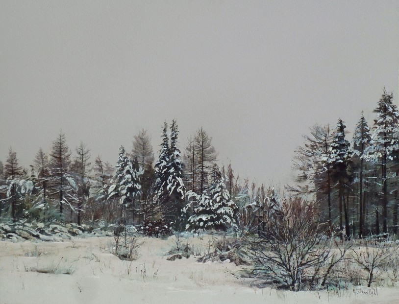 John Bell_Forest Clearing, Sidlaws_Acrylics_18x24