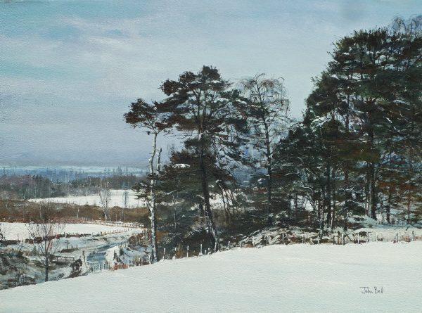 John Bell_Scots Pine, Ballo Glack, Sidlaws_Acrylic_18x24