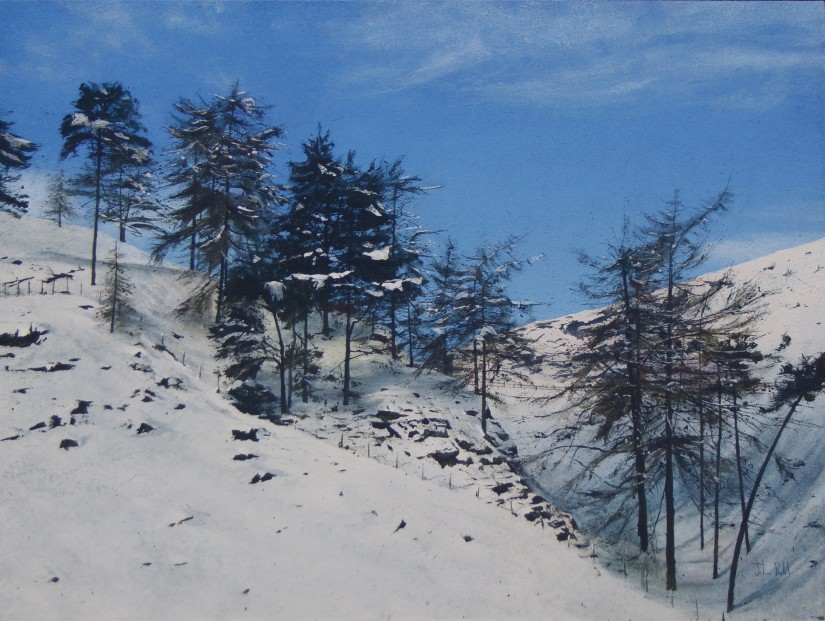 John Bell_Top of the Pass, Lumley Den_Acrylic_18x24