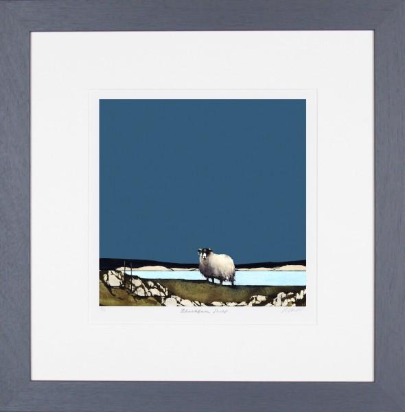 Ron Lawson_Blackfaced Sheep II_20x19.5_Framed print