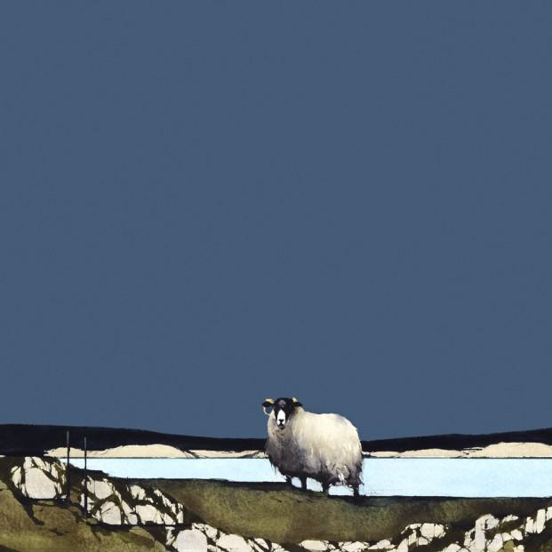 Ron Lawson_RL_Blackfaced Sheep II_10x10