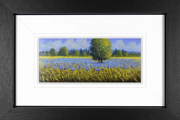 David Short_Original_Himalayan Poppies_image 6.5x 15_Framed 23x23