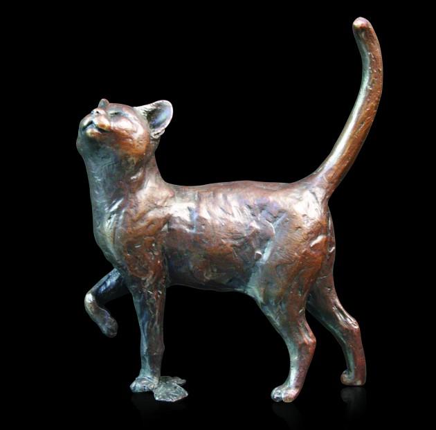 746 Cat Purring