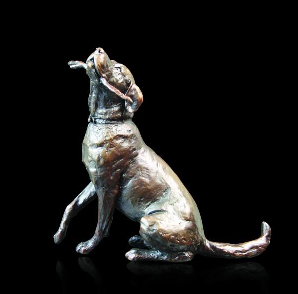 877 Medium Labrador with Stick