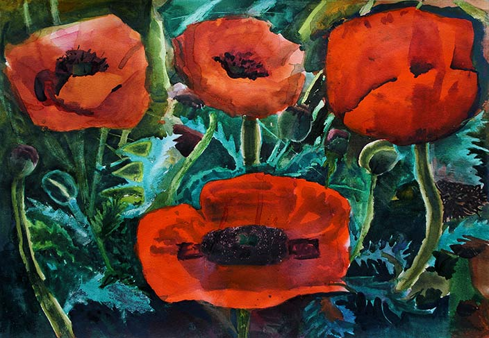 Michael-Robson,-Red-Poppies