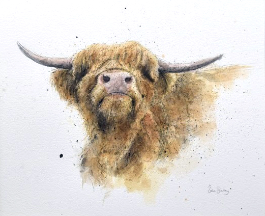 Zaza Shelley_Original_Watercolour_Highland Cow Small_image 23 x 19 (2)