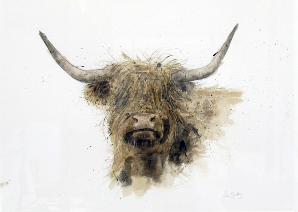 Zaza Shelley_Original_Watercolour_Highland Cow lge_image 28.5 x 20.5