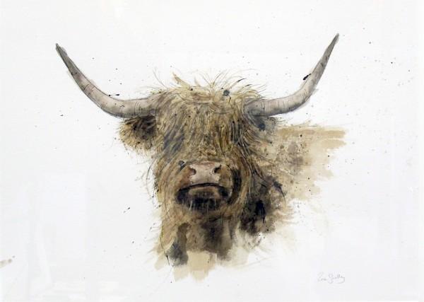 Zaza Shelley_Original_Watercolour_Highland Cow lge_image 28.5 x 20.5