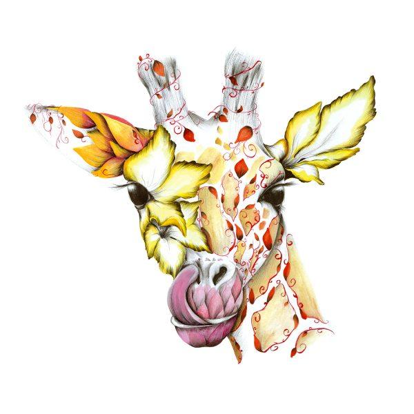 Small_Giraffe_Lily