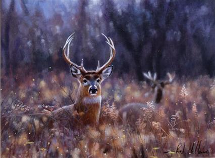 Rob Hefferan_Original_Acrylics_ Stag II
