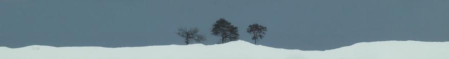 Three trees, Sidlaws sml