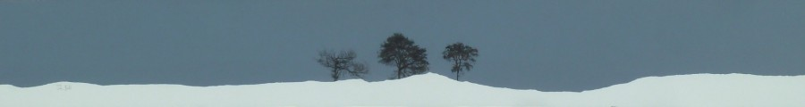 Three trees, Sidlaws