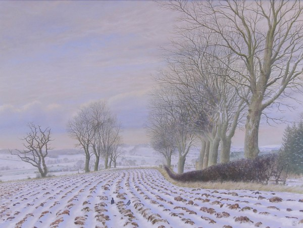 Alister Lindsay_A covering of Snow_oils_20x15_