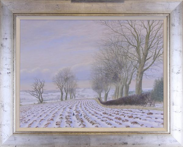 Alister Lindsay_A covering of Snow_oils_20x15_25x20
