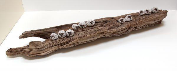Jane Adams_Original_Ceramic on Driftwood_11 Sheep on a Log_42x5x8 (1)