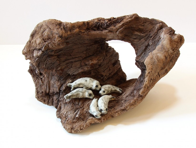 Jane Adams_Original_Ceramic on Driftwood_5 Seals in a Cave_11x16x10 (1)
