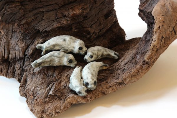 Jane Adams_Original_Ceramic on Driftwood_5 Seals in a Cave_11x16x10 (2)
