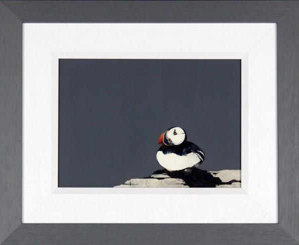 Ron Lawson_Original_Watercolour and Gouache_Puffin Portrait I_image 9.5x13_framed 17x 21 (1)